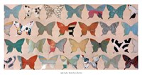 "Butterfly Collection by Jodi Fuchs - 38"" x 20"""