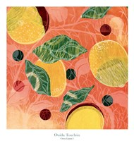 Citrus Limon I Fine Art Print