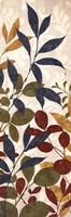 Leaves of Color II Fine Art Print