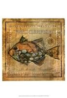 "Ocean Fish XI by Beth Anne Creative - 13"" x 19"""