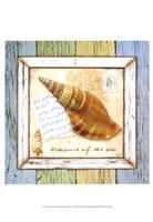 "Sea Treasures I by Beth Anne Creative - 13"" x 19"""
