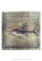 "Occean Fish VIII by Beth Anne Creative - 13"" x 19"""