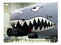 Flying Tigers I - various sizes, FulcrumGallery.com brand