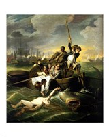 J.S. Copley - Watson and the Shark - various sizes, FulcrumGallery.com brand