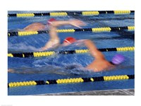Swimmer Racing in a Swimming Pool