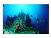 Scuba diver watching a shipwreck underwater Fine Art Print