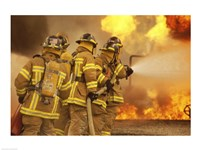 Rear view of a group of firefighters extinguishing a fire and flames - various sizes