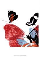 Butterflies Dance IX Framed Print