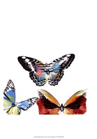Butterflies Dance II Framed Print