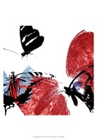 Butterflies Dance VIII Framed Print