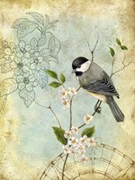 Songbird Sketchbook II Fine Art Print