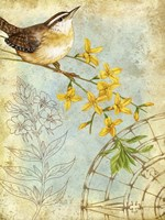 Songbird Sketchbook I Fine Art Print