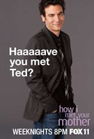 How I Met Your Mother - Haaaaave you met Ted? Wall Poster