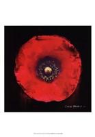 "Vibrant Flower VII by Lola Henry - 13"" x 19"""