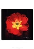 "Vibrant Flower IX by Lola Henry - 13"" x 19"""