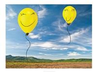 Smile Valley - various sizes