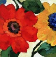Anemone Garden II Fine Art Print