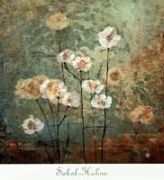 Textures IV Fine Art Print