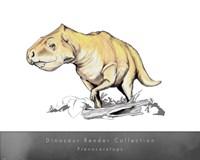 Prenoceratops - various sizes - $30.99