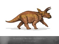 Anchiceratops - various sizes