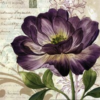 Study in Purple II -mini Fine Art Print