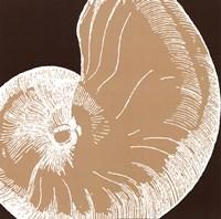 "Natural Shell II - mini by N. Harbick - 12"" x 12"""