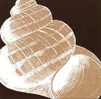 "Natural Shell III - mini by N. Harbick - 12"" x 12"""