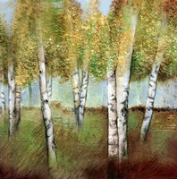 BIRCH WOODS I Fine Art Print