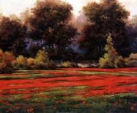 Autumn Poppies II Fine Art Print