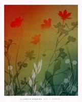 kari's garden II Fine Art Print