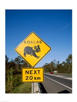 Koala sign on the road, Queensland, Australia Fine Art Print