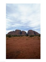 Rock formations on a landscape, Olgas, Uluru-Kata Tjuta National Park, Northern Territory, Australia Vertical Fine Art Print