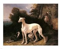 Alfred Dedreux - A Greyhound In An Extensive Landscape Fine Art Print