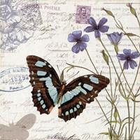 "Papillon Tales I by Pela - 18"" x 18"", FulcrumGallery.com brand"