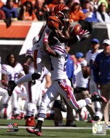 A.J. Green 2011 Catch Fine Art Print