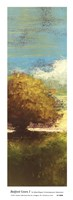 Bedford Green I Framed Print