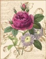 Bloomsbury II Fine Art Print