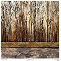 "Telluride II by Michael Brey - 20"" x 21"""