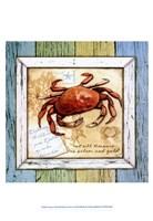 "Sea Treasures VIII by Beth Anne Creative - 13"" x 19"""