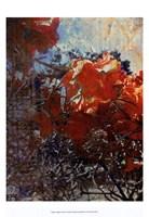 Tangled II Fine Art Print