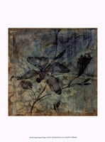 """Small Ethereal Wings I by Jennifer Goldberger - 10"""" x 13"""" - $10.49"""
