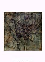 "Small Ethereal Wings VI by Jennifer Goldberger - 10"" x 13"" - $10.49"