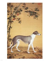 Greyhound by Bamboo Fine Art Print