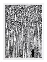 Man and Bamboo Fine Art Print
