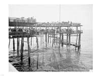 Hauling the Nets, Young's Pier, Atlantic City, NJ Fine Art Print