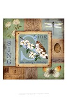 Sweet Inspirations IV Fine Art Print