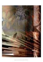 Relic Fan I Fine Art Print
