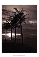 "Palms At Night III by Tang Ling - 13"" x 19"""