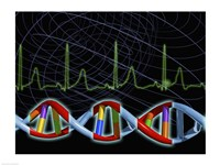 Close-up of the human DNA structure Fine Art Print