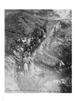 Col. Roosevelt's party descending Bright Angel Trail - various sizes